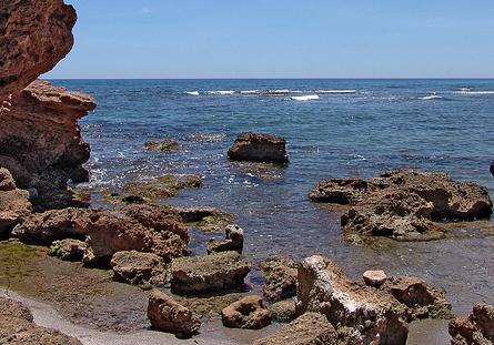 Espacios Naturales - Detalle Cala Rocosa - Costa de Azahar (Rustic MED - www.rusticmed.es)